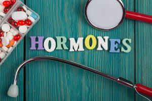 "Text ""Hormones"" of colored wooden letters"